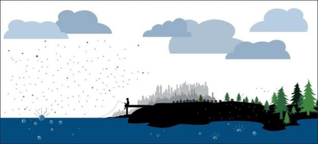 fisherboyoverall